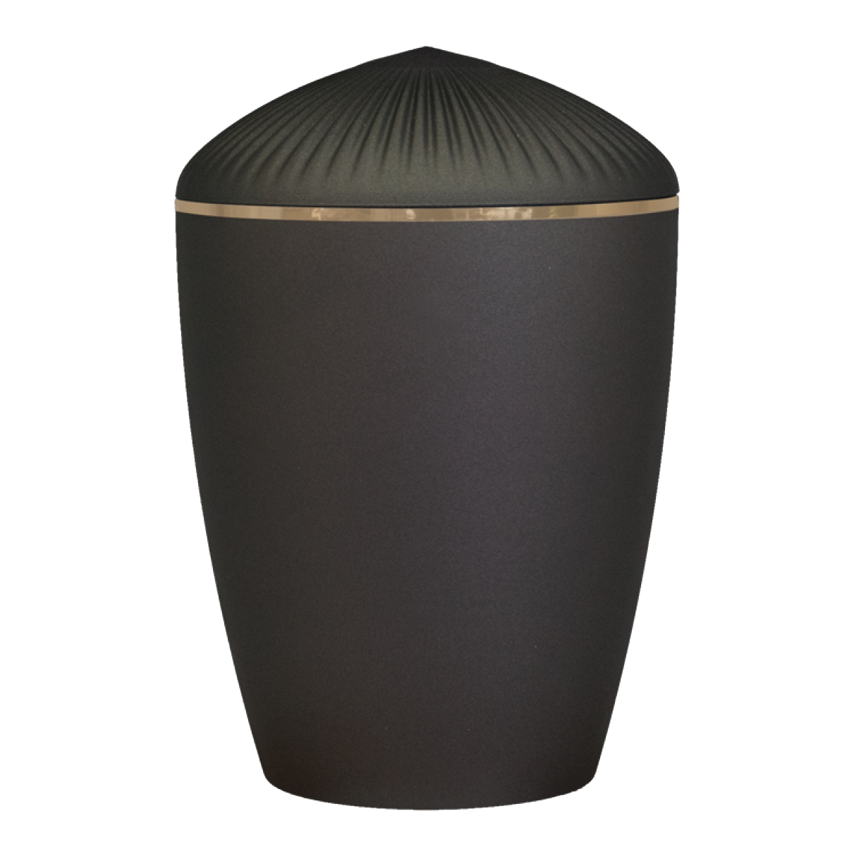 Ferndown Gold Band Cremation Urn – Black