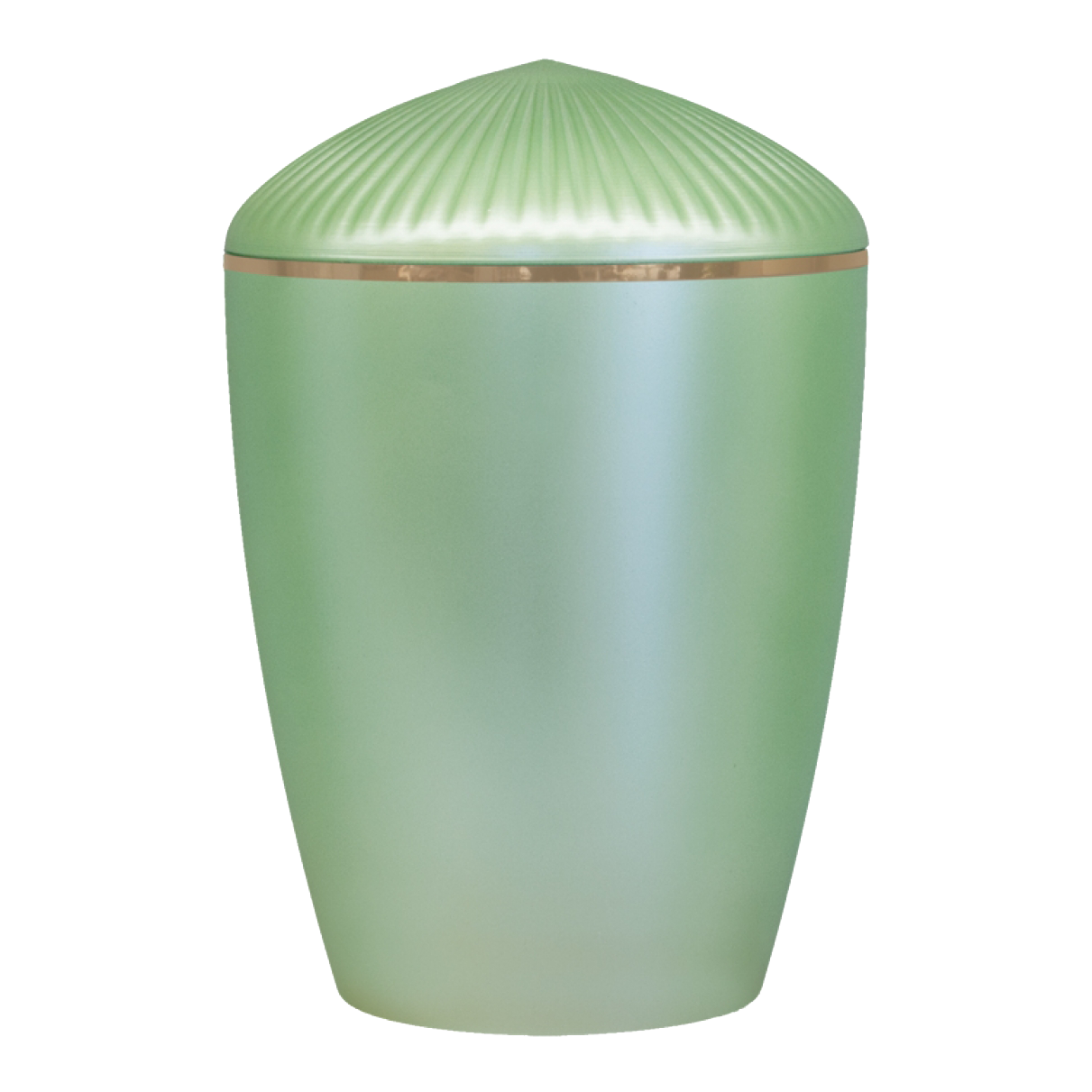 Ferndown Gold Band Cremation Urn – Light Green