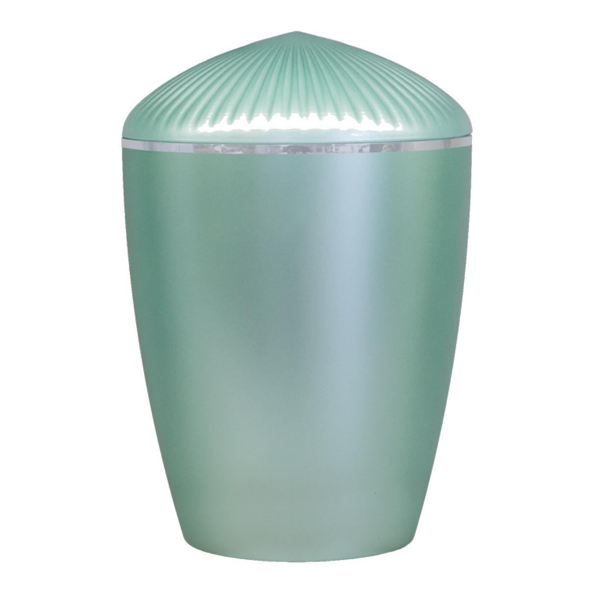 Ferndown Silver Band Cremation Urn – MInt